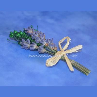 Home-Cocarda Nunta Provence